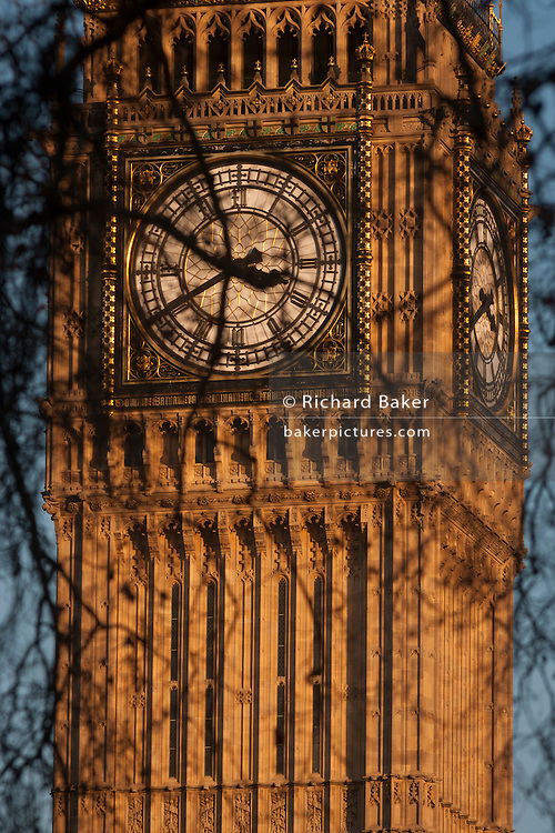 Branches of winter Plane trees in the foreground and the clockface containing the Big Ben bell in the Elizabeth Tower of the British parliament, on 17th January 2017, in London England. The Elizabeth Tower (previously called the Clock Tower) named in tribute to Queen Elizabeth II in her Diamond Jubilee year – was raised as a part of Charles Barry's design for a new palace, after the old Palace of Westminster was largely destroyed by fire on the night of 16 October 1834. The new Parliament was built in a Neo-gothic style. Although Barry was the chief architect of the Palace, he turned to Augustus Pugin for the design of the clock tower. It celebrated its 150th anniversary on 31 May 2009. The tower was completed in 1858 and has become one of the most prominent symbols of both London and England.
