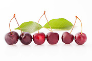 Ripe cherries in row over white background.