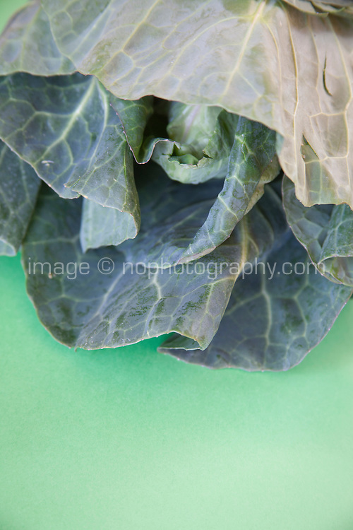 Fresh green cabbage on a green background