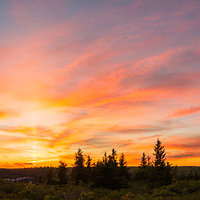 Beautiful sunset at Dolly Sods Wilderness, panorama view,  near Davis, WV