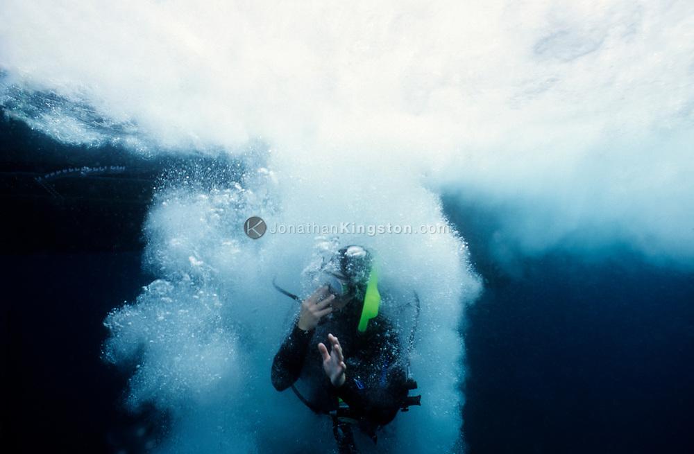 CHANNEL ISLANDS NATIONAL PARK, CA:  A SCUBA diver jumps into the waters of the Channel Islands National Park, California. (Model Released)