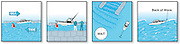 A series of vector thumbnail illustrations for passing a jetty