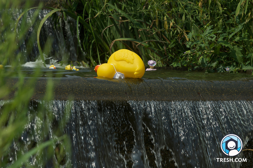 Saturdays in the Park Rubber Ducky Dash down the fountain at Meridian Hill Park in Washington, D.C., Saturday, July 27, 2008. Many of the ducks hovered in place, especially at each falls, including the extra-large sailor duck laying on its side.