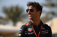 Formula 1 - Gran Premio di Abu Dhabi - Nella foto: Daniel Ricciardo  - Red Bull     - Formula 1