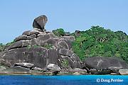 rock formation in Shoe Bay, or Donald Duck Bay, Similan Islands, Thailand ( Andaman Sea / Indian Ocean )