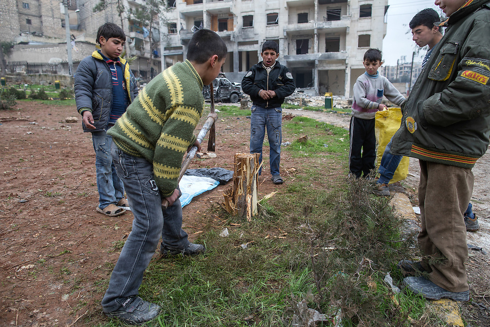 Children cutting a tree branches at a public park to be used for heating in Aleppo.