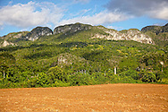 Field and mogotes, El Moncada, Pinar del Rio, Cuba.