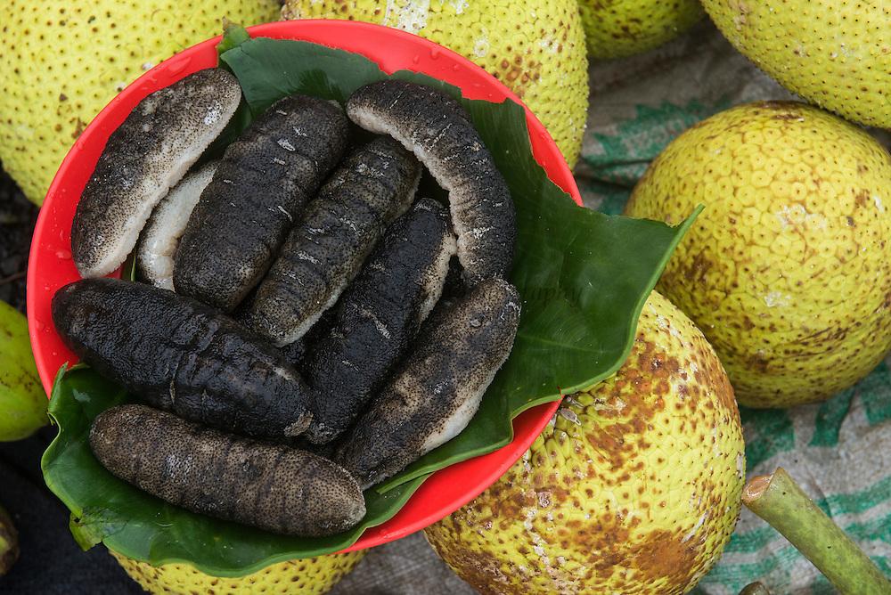 Sea Cucumber for Sale,<br /> Suva Sea Food Market<br /> Suva<br /> Viti Levu<br /> Fiji. <br /> South Pacific