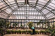 Palermo, Kalsa neighborhood, The Botanical Garden