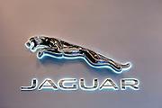 Car Logo, Jaguar