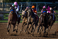 ARCADIA, CA - DECEMBER 30: Peace with Mike Smith (orange) defeats Regulate (pink cap) and Restoring Hope (pink silks) to break his maiden at Santa Anita Park on December 30, 2017 in Arcadia, California. (Photo by Alex Evers/Eclipse Sportswire/Getty Images)