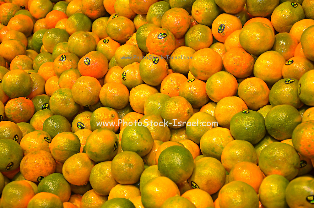 A pile of Clementine
