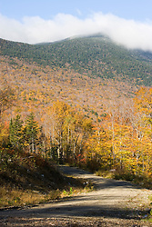 A logging road near Grafton Notch State Park in Maine's Northern Forest.  Old Speck Mountain is in the distance.
