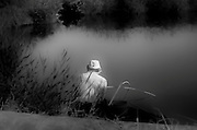 Man fishing in lake with back to camera in black and white