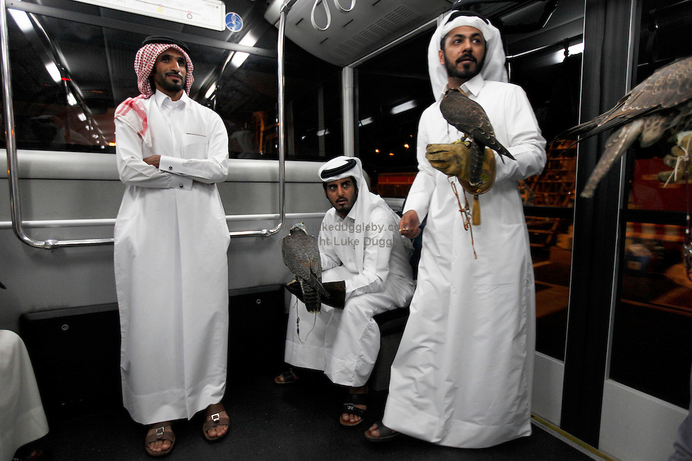 After landing at Doha Aiport from Baku, Azerbaijan, a group of Qatari men hold their most treasured birds on the transfer bus to the terminal. The men practise the art of falconry and to escape the heat of Qatar flew for a week to the cooler weathers of Azerbaijan to let the birds fly. The birds cost over US$10,000 each, have micro-chips in their legs so they can find them if they fly off and documents allowing them to travel abroad.