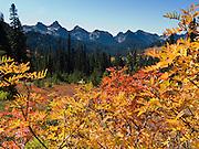 Tatoosh Range, Mount Rainier National Park, Washington, USA. Fall foliage colors.