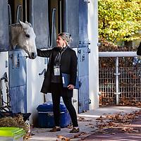 Scenes Auteuil 05/11/2017 photo: Zuzanna Lupa