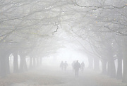 ©London News pictures...16/11/2010. Walkers in the fog in Richmond Park in London today (Tues). Photo credit should read Stephen Simpson/London News Pictures.