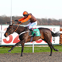 Free Thinking and Mr S Waley-Cohen winning the 2.00 race