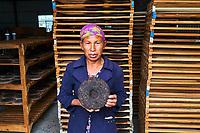 Chine, Province du Yunnan, region de Xishuangbanna, usine de thé Pu'er, un des thés les plus réputés de Chine // China, Yunnan, Xishuangbanna district, Pu'er tea, Pu'er tea factory, one of the best chinese tea