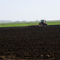 Tractor plowing the soil for sowing, Central California, USA