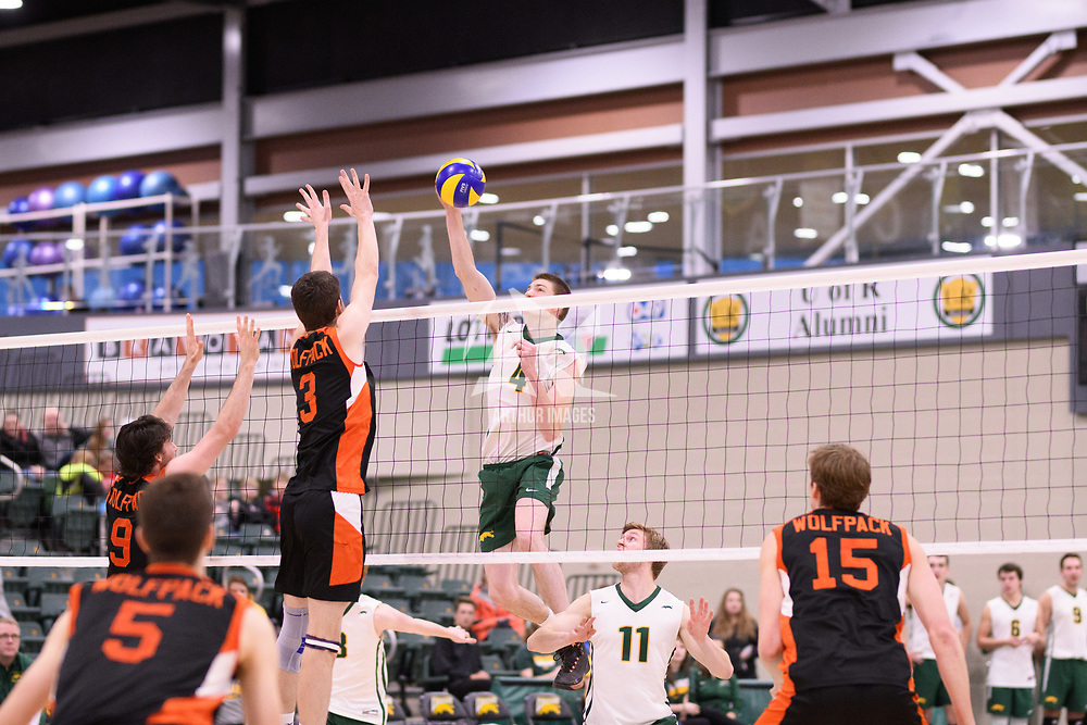 3rd year middle blocker Cody Caldwell (4) of the Regina Cougars in action during Men's Volleyball home game on January 13 at Centre for Kinesiology, Health and Sport. Credit: /Arthur Images 2018