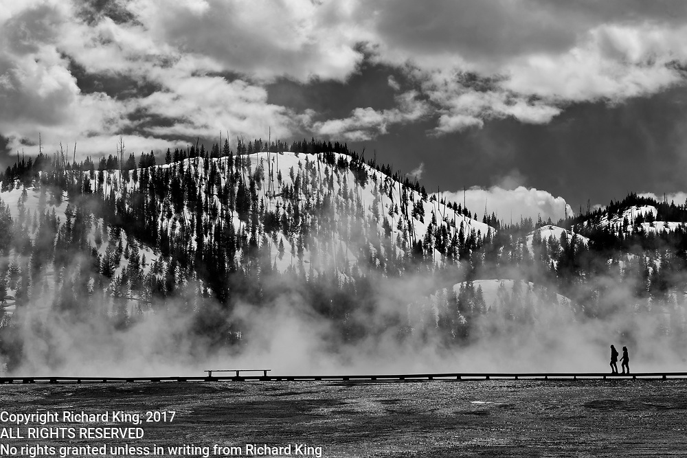 Winter Landscape and wildlife photographs from Yellowstone National Park, ID, USA