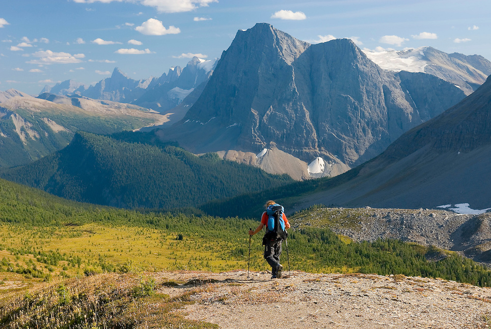Hiker descending a slope above Goodsir Pass looking south to the northern section of the Rockwall, Kootenay National Park British Columbia Canada