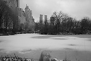 New York. Central park under the snow , the pond  / Central park  le pond  Central park sous la neige.