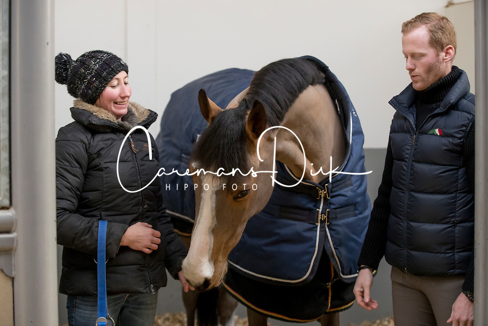 Bruynseels Niels, (BEL), Gancia de Muze<br /> Stal Bruynseels - Bonheiden 2017<br /> &copy; Hippo Foto - Dirk Caremans<br /> 19/01/17