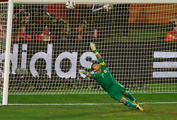29.06.2010, Loftus Versfeld Stadium, Pretoria, RSA, FIFA WM 2010, Paraguay (PAR) vs Japan (JPN), im Bild Goalkeeper of Paraguay Justo Villar during the penalty shots when Yuichi Komano of Japan missed the shot after 0-0 in overtime during the 2010 FIFA World Cup South Africa R. EXPA Pictures © 2010, PhotoCredit: EXPA/ Sportida/ Vid Ponikvar +++ Slovenia OUT +++