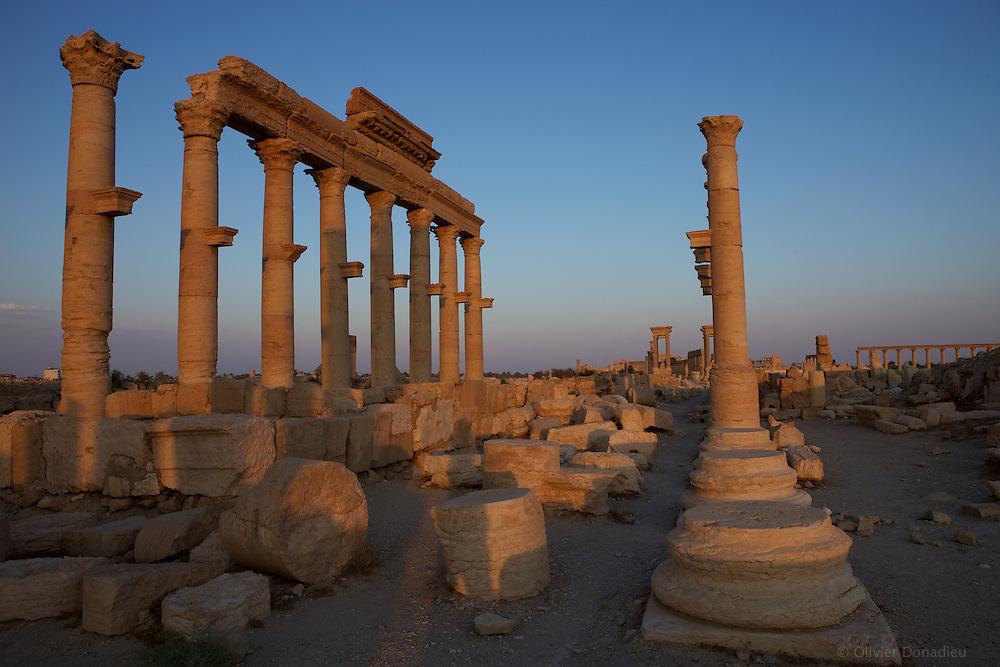 Ruins of Palmyra, Syria..Ruines de Palmyre, Syrie.
