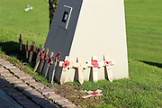 Poppy's on wooden crosses are laid at a memorial at the National Memorial Arboretum, Croxall Road, Alrewas, Burton-On-Trent,  Staffordshire, on 29 October 2018. Picture by Mick Haynes.
