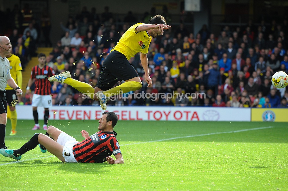 04.10.2014.  Watford, England. Gianni Munari. Skybet Championship. Watford versus Brighton and Hove Albion.