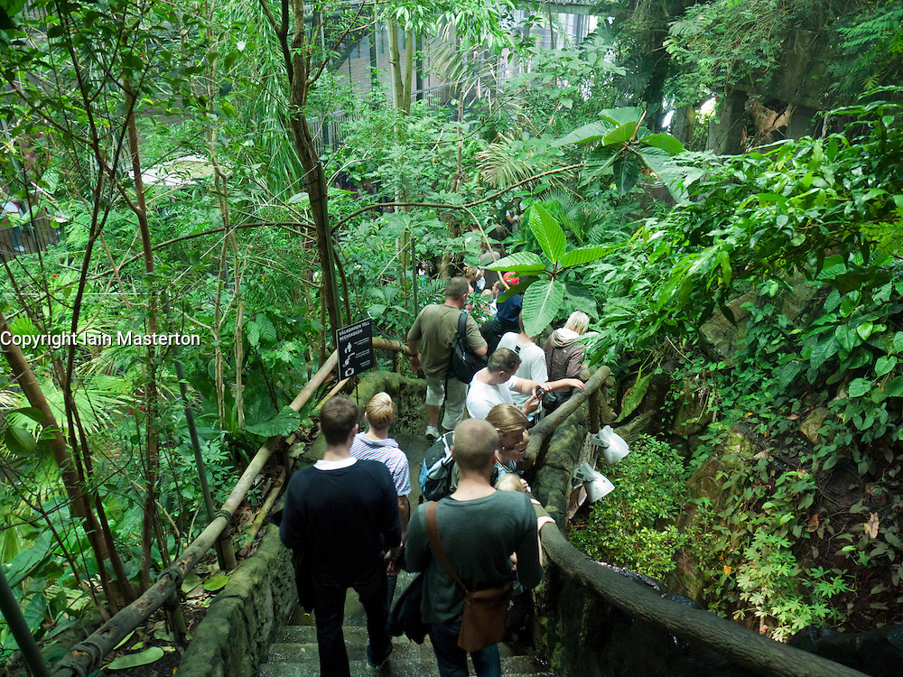 Interior of tropical rainforest zone inside Universeum science museum in Gothenburg Sweden