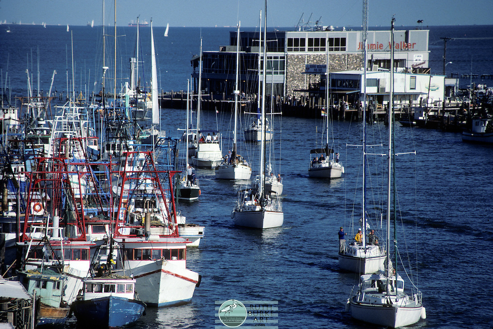 1984 Docked Shrimp Boats with Sailboats in Channel