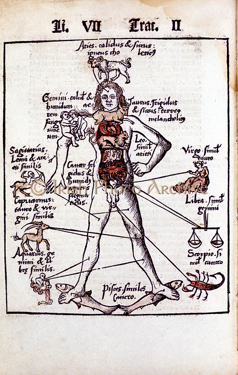 Relationship of organs of the body, the Humours and signs of Zodiac. From Gregor Reisch 'Margarita Philosophica' Basle, 1508. Leo sole house of the Sun governs the heart - hence Lion Hearted. Hand-coloured woodcut.