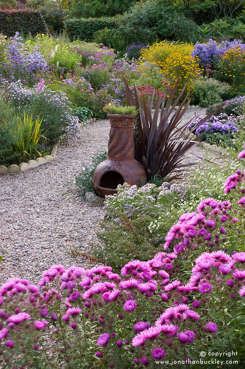View of aster garden at Old Court Nurseries. Aster novae-angliae 'Quinton Menzies' in the foreground. Chiminea focal point.