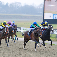 Lingfield 11th January