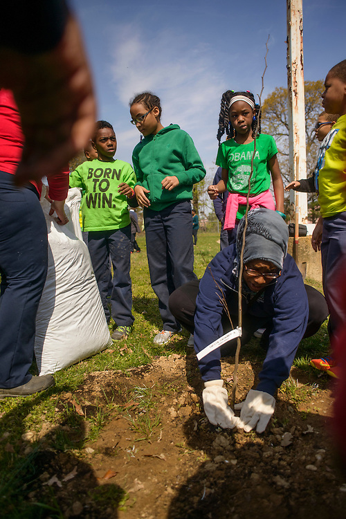 District Heights, Maryland - April 25, 2014: Longfield Elementary School planted trees with the help of Neighborhood Design Center for their Arbor Day celebration.<br /> CREDIT: Matt Roth