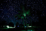 Starry night sky, Kahili Mountain Park, Kauai, Hawaii