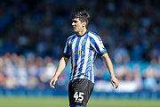 Fernando Forestieri of Sheffield Wednesday during the EFL Sky Bet Championship match between Sheffield Wednesday and Queens Park Rangers at Hillsborough, Sheffield, England on 31 August 2019.