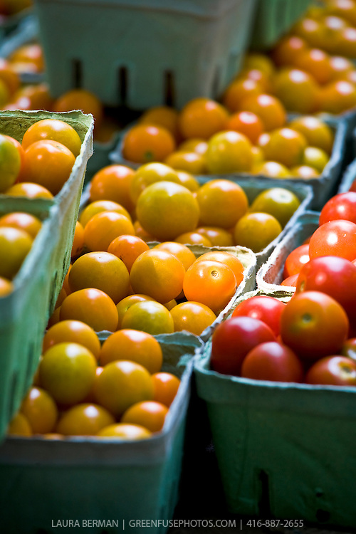 Red and yellow cherry tomatoes at the farmers market.