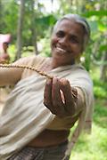 INDIA, india