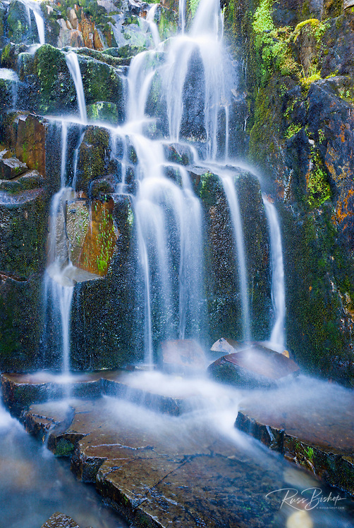 Cascade on Sunbeam Creek, Mount Rainier National Park, Washington USA