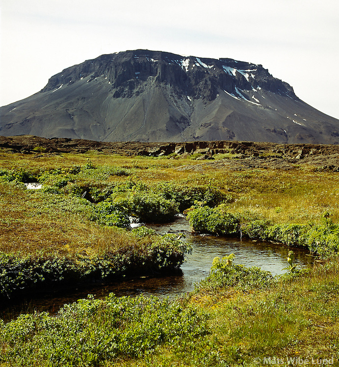 "Herðubreið séð til suðvesturs, Hálendið suður af Mývatnsöræfi. / Mount Herdubreid  - the ""Quen of Icelandic Mountains"" viewed to south west. Highlands south of the main road between Myvatn and Grimsstadir a Fjollum."