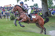SANTIAGO BAY ridden by Gemma Tattersall at Bramham International Horse Trials 2016 at  at Bramham Park, Bramham, United Kingdom on 11 June 2016. Photo by Mark P Doherty.