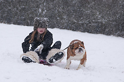 © London News Pictures. 20/01/2013. Bluebell Hill, Chatham, Kent. Young girl with her pet bulldog sledges down the snowy slopes of Bluebell Hill in Chatham, Kent. Continued snowy weather finally hits Kent and is forecast for the next 48 hours. Picture credit should read Manu Palomeque/LNP