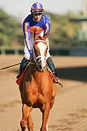 Rags to Riches with Garrett Gomez aboard wins the Santa Anita Oaks at Santa Anita Park, Arcadia CA. 3.11.2007