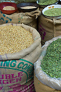 Coriander seeds and dried fenugreek leaves on sale at Khari Baoli spice and dried foods market, Old Delhi, India